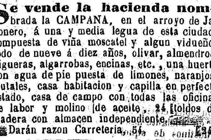 Cortijo La campana (3)