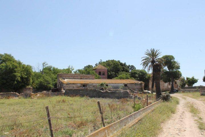 Santa Tecla 2